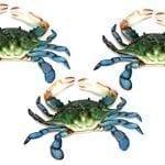 14 6-inch-Maryland-Blue-Crab-Set-of-3-Beach-Tiki-Bar-Wall-Decor-0