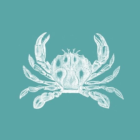 ct164898-InspirationzStore-Vintage-Art-White-crab-etched-teal-turquoise-aqua-blue-nautical-beach-sea-ocean-Tiles-0-1 16 Fun Crab Beach Accents For Your House