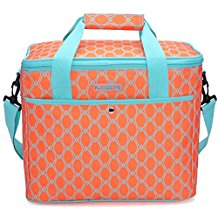 MIER-18L-Large-Soft-Cooler-Insulated-Picnic-Bag The Best Outdoor Coolers and Ice Chests