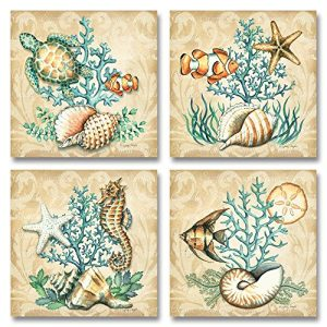 Sea-Life-Still-Life-Collages-Shells-Seahorses-Reef-Fish-Starfishes-Coral-0