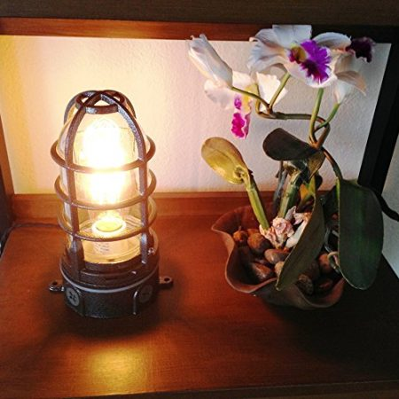2b-vapor-touch-nautical-themed-caged-lamp-450x450 Nautical Themed Lamps