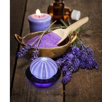 9b-SeaThingz-sea-urchin-purple-night-light