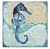seahorse-canvas The Best Seahorse Artwork You Can Buy