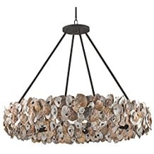 11-oyster-seashell-coastal-chandelier The Best Beach Themed Chandeliers You Can Buy