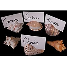seashell-place-card-holders-favors Best Nautical Wedding Favors You Can Buy