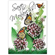 common-milkweed-seed-packet-favors Best Seed Packet Wedding Favors You Can Buy