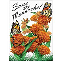 save-the-monarchs-wedding-seed-favors Best Seed Packet Wedding Favors You Can Buy