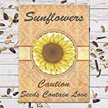 sunflowers-individual-seed-favor-packets Best Seed Packet Wedding Favors You Can Buy
