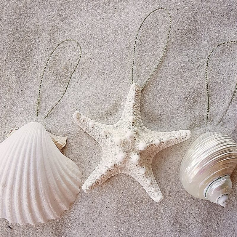 Seashell-Ornaments-800x800 Amazing Starfish Christmas Ornaments