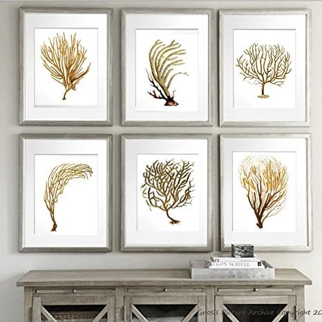 unframed-coral-wall-print Coral Decor