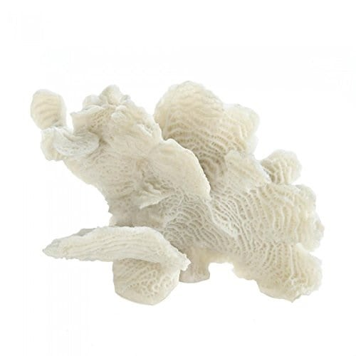white-coral-accent-decor Beautiful Coral Decor