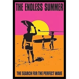 endless-summer-search-for-the-perfect-wave Surf Decor & Surfboard Decorations