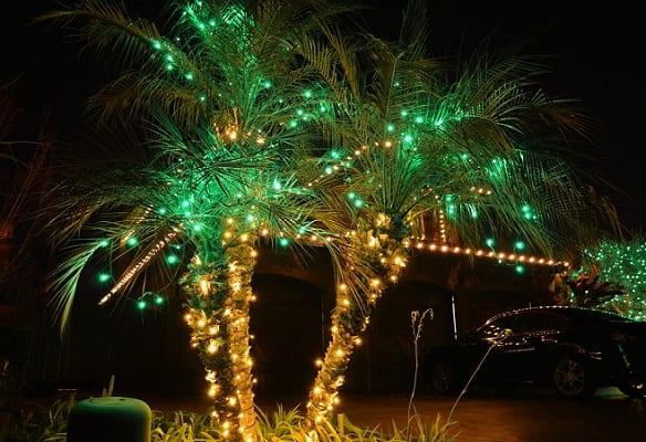 Christmas-Lighting-Bakersfield-CA-by-Keylor-Landscape-and-Christmas-Decor 25+ Beach Christmas Decorating Ideas