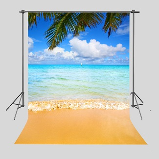 Beach Backdrops