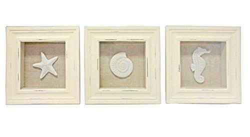 3 Sealife Shadow Boxes Seahorse Starfish Shell Seashell 0