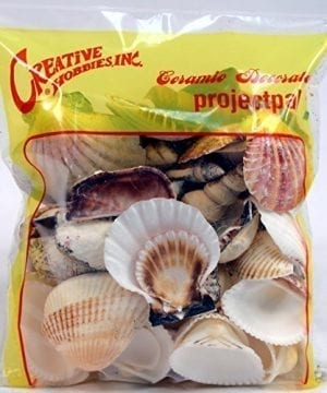 Creative Hobbies Sea Shells Mixed Beach Seashells Various Sizes Up To 2 Shells Bag Of Approx 50 Seashells 0 0 300x360