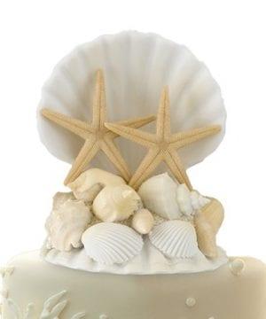 Lillian Rose CT440 Coastal Seashell Cake Top 5 Inch 0 300x360