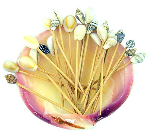 real-seashell-wood-toothpicks Top Rated Sets of Seashell Toothpicks