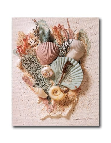Ocean Starfish Sea Shell Beach Bathroom 2 Wall Picture 8x10 Art Print 0