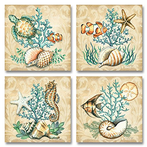 Sea Life Still Life Collages Shells Seahorses Reef Fish Starfishes Coral 0