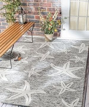 Nuloom-Catalina-IndoorOutdoor-Area-Rug-0-300x360 Starfish Rugs and Starfish Area Rugs