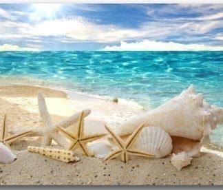 Beautiful-beach-seascape-Door-Mats-Cover-Non-Slip-Machine-Washable-Outdoor-Indoor-Bathroom-Kitchen-Decor-Rug-Mat-Welcome-Doormat-0-324x276 Beach Doormats and Coastal Doormats
