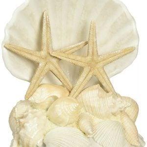 Lillian Rose Seashell Wedding Cake Topper