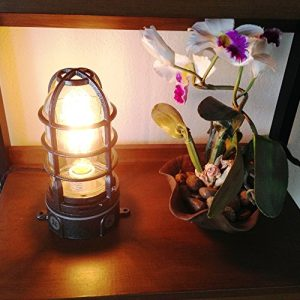 2b-vapor-touch-nautical-themed-caged-lamp-300x300 Nautical Themed Lamps