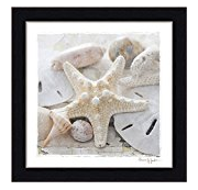Sanibel-I Best Sand Dollar Wall Art and Sand Dollar Wall Decor For 2020