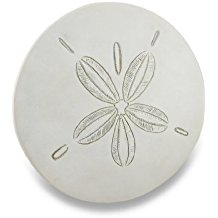 Weathered-Finish-white-Sand-Dollar-Wall-Hanging-Plaque Best Sand Dollar Wall Art and Sand Dollar Wall Decor For 2020