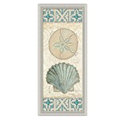 beach-treasures Best Sand Dollar Wall Art and Sand Dollar Wall Decor For 2020