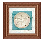 blue-seashell Best Sand Dollar Wall Art and Sand Dollar Wall Decor For 2020
