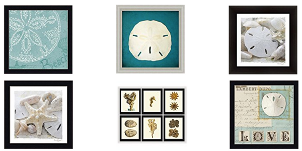 The Best Sand Dollar Wall Art You Can Buy