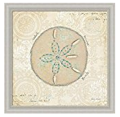 sand-dollar-print Best Sand Dollar Wall Art and Sand Dollar Wall Decor For 2020