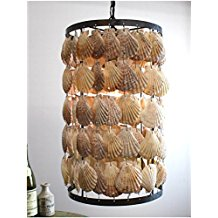 12-round-scallop-shells-chandelier Beach Chandeliers & Coastal Chandeliers