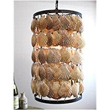 12-round-scallop-shells-chandelier Beach Themed Chandeliers