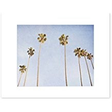 3-venice-beach-palm-trees-art-print Beach Wall Decor