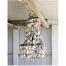 4-oyster-shell-chandelier Beach Themed Chandeliers