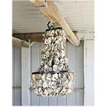 4-oyster-shell-chandelier Beach Chandeliers & Coastal Chandeliers