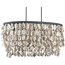 8-wrought-iron-oyster-shells-chandelier Beach Themed Chandeliers
