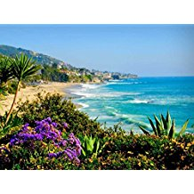 Canvas-Prints-LAGUNA-BEACHCALIFORNIA-Oil-Painting Beach Paintings and Coastal Paintings