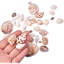 mixed-style-diy-seashells Seashell Mirrors and Capiz Mirrors