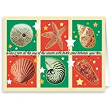 seasons-greetings-seashells-christmas-card-18 Beach Christmas Cards and Nautical Christmas Cards