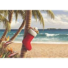 stocking-hung-from-palm-tree-alan-giana-christmas-cards-18 Beach Christmas Cards and Nautical Christmas Cards