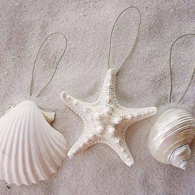 Seashell-Ornaments-800x800 Starfish Christmas Ornaments