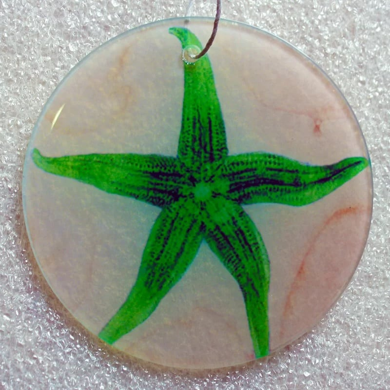 X-Ray-Designs-Starfish-Frosted-Glass-Ornament Starfish Christmas Ornaments