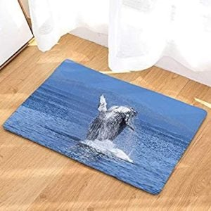 Whale Doormats and Whale Floor Mats