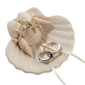 Lillian-Rose-Fashionable-Ring-Pillow-Alternative-Coastal-Seashell-Holder 100+ Beach Wedding Decorations and Ideas