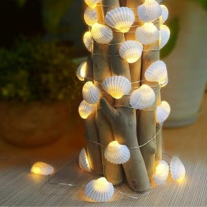 WSgift-Natural-Beach-Seashell-String-Lights 100+ Beach Wedding Decorations and Ideas