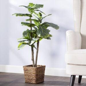 Foliage+Tree+in+Basket